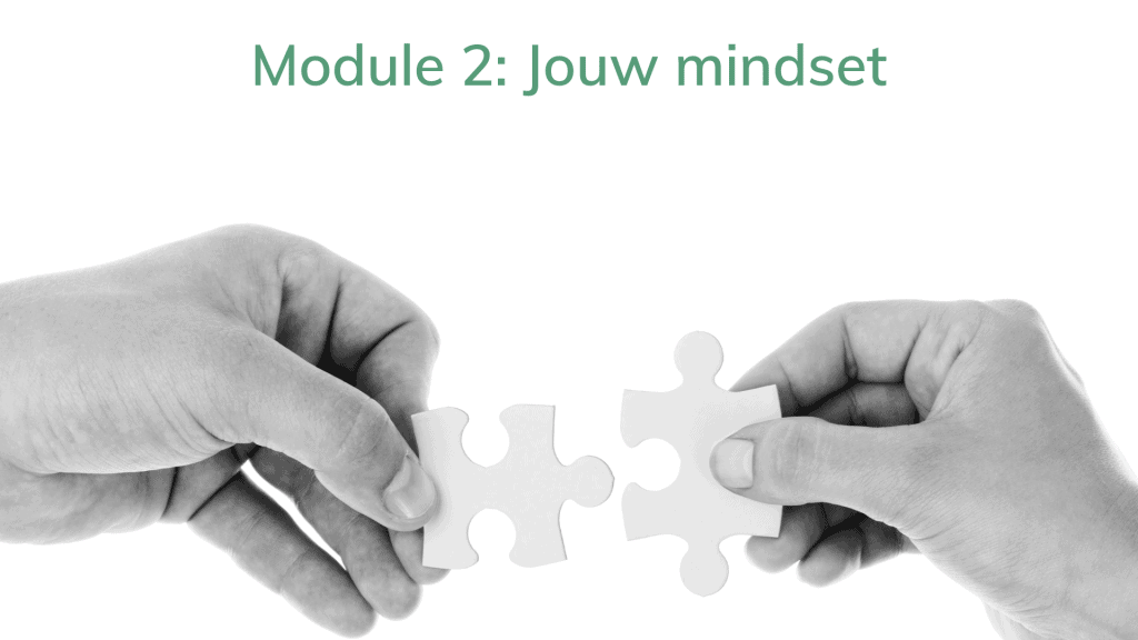 kopie van modules leeromgeving